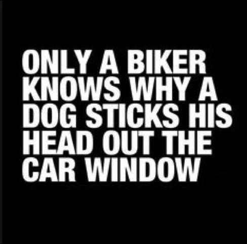 sadece motosiklet sürücüleri bilir