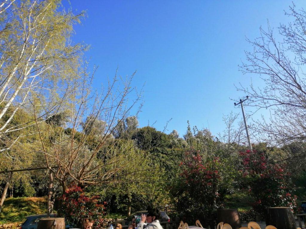 Artemis Restoran manzara tepe tarafı