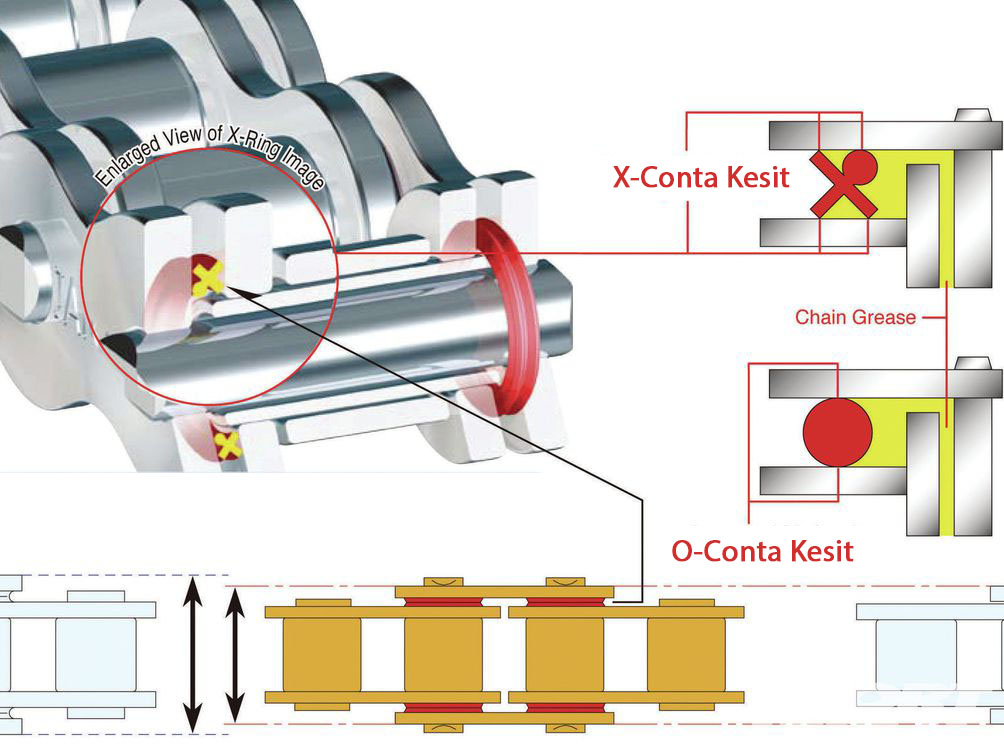 O-ring ve X-ring zincir - yapı kesit